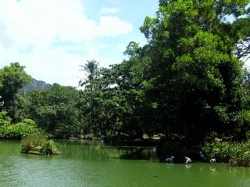 マレーシア139動物園