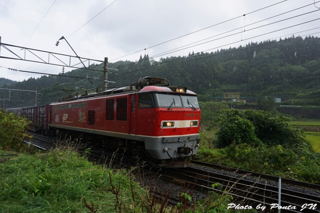 SL16-0003.jpg