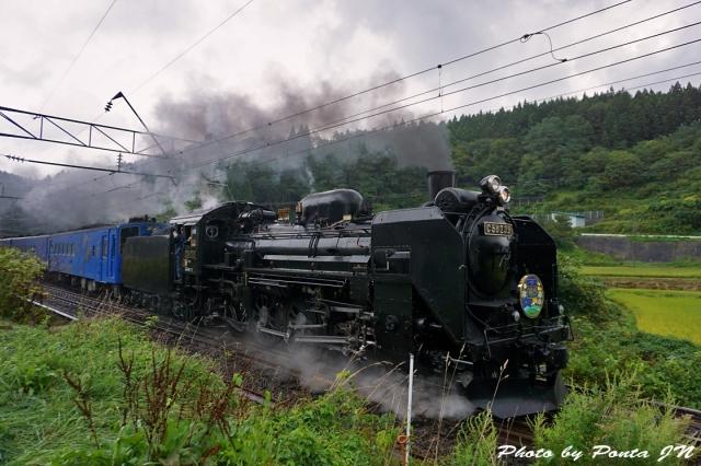 SL16-0009.jpg