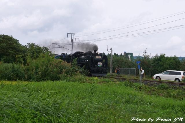 SL16-0014.jpg