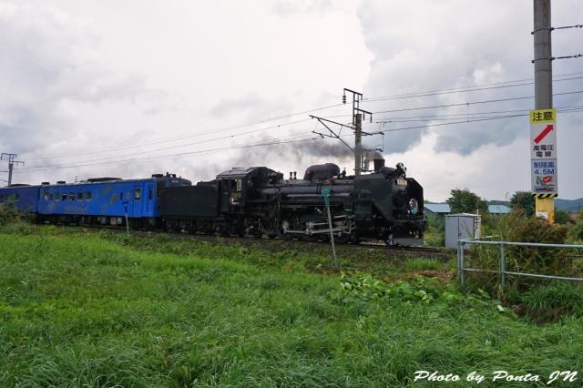 SL16-0015.jpg