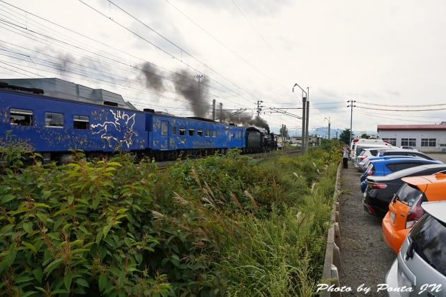 SL16-0028.jpg