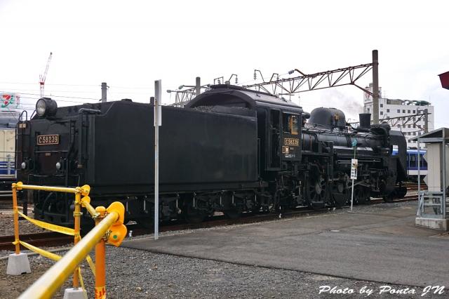 SL16-0033.jpg