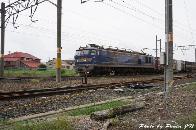 SL16-0047.jpg