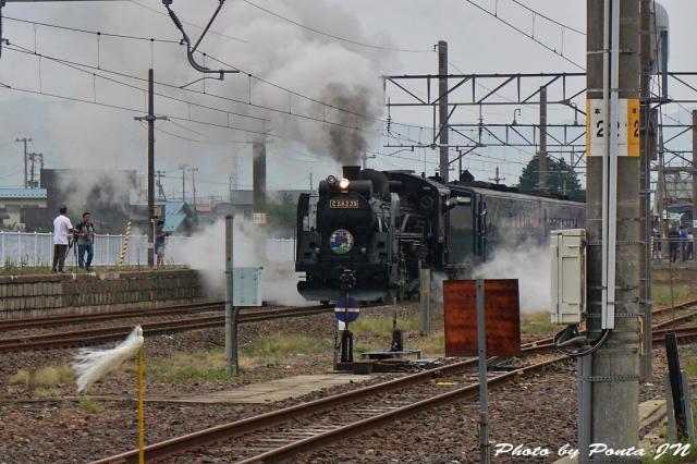 SL16-0051.jpg
