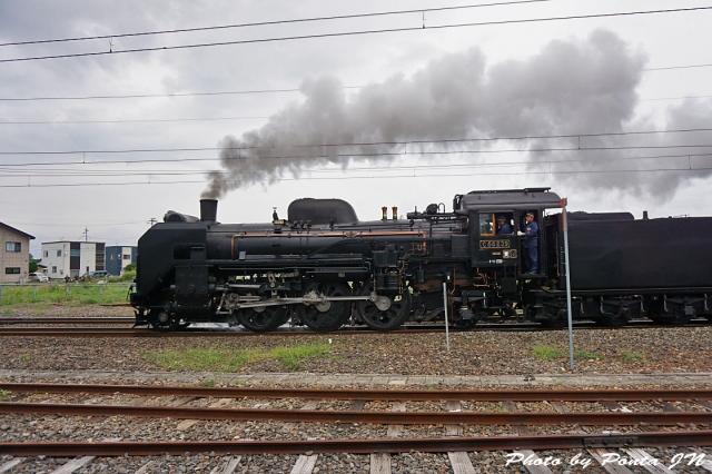 SL16-0056.jpg
