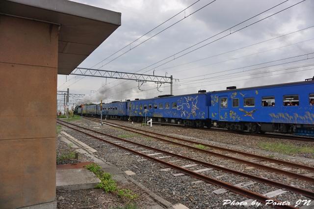 SL16-0059.jpg