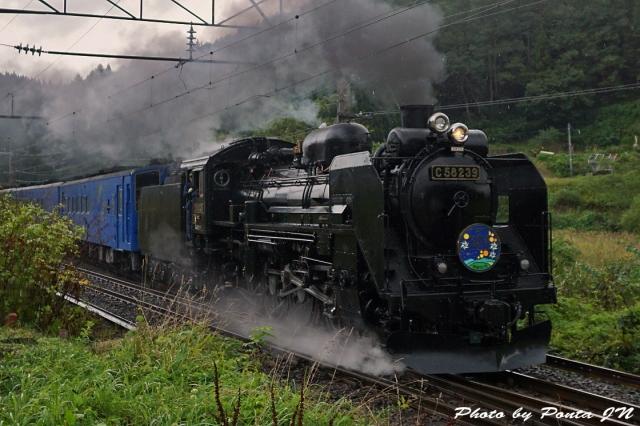 SL16-0063.jpg