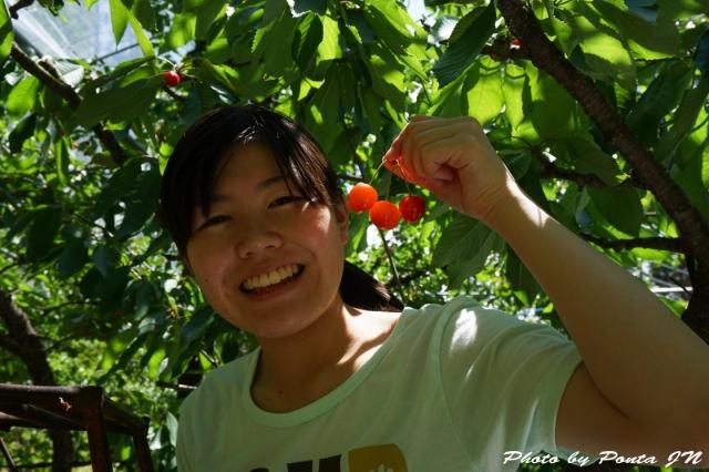 cherry2016-0016.jpg