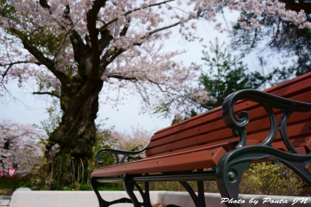 mutsuyoko1605-0007.jpg