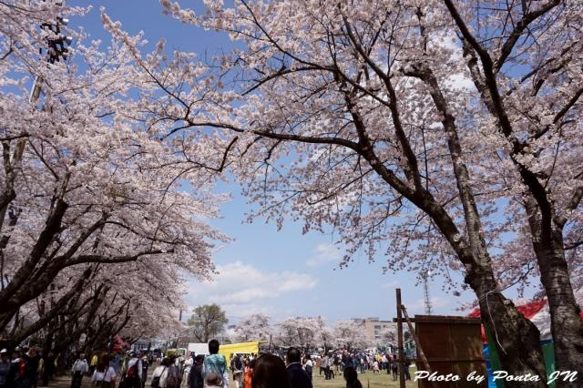 yabu16A-0098.jpg