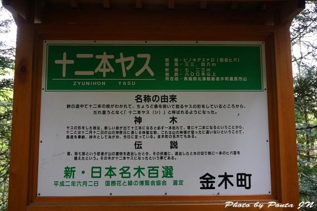 yasu1605-0008.jpg