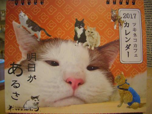 2016 10 ツキネコカレンダー