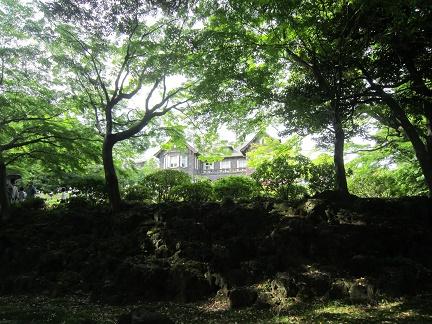 2016旧古河庭園1