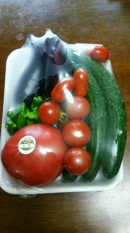 夏野菜セット