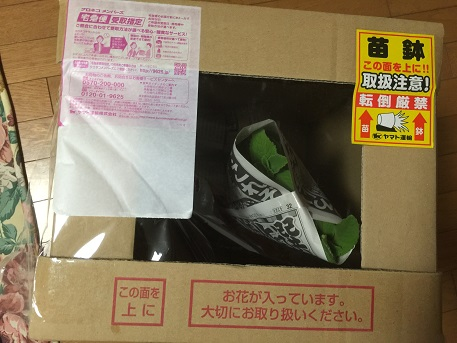 フラワーネット日本花キ流通