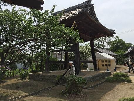 アジサイ寺
