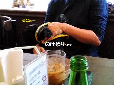 P_20161016_124401.jpg