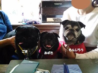 P_20161016_144127.jpg