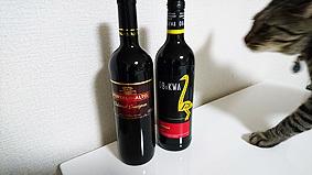 ボトル20161206