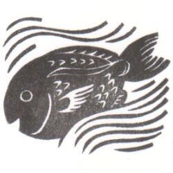 年賀2017白波鯛
