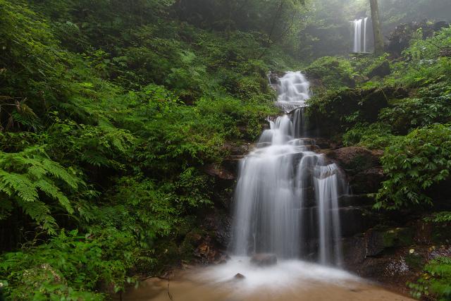 安来市伯太町 鷹入りの滝