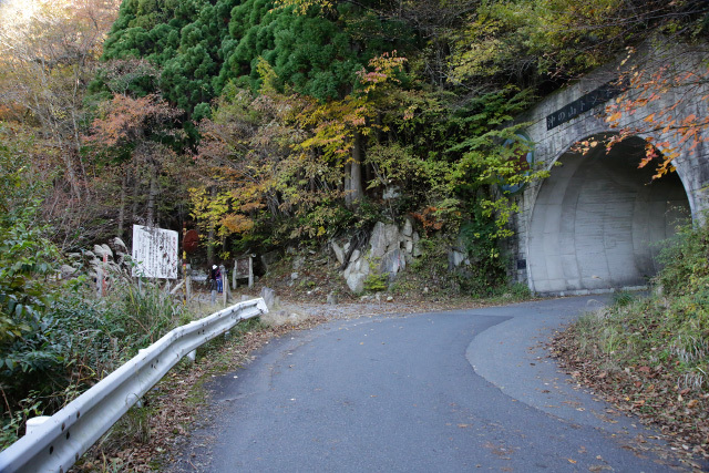 鳥取県 智頭町 芦津渓谷 紅葉