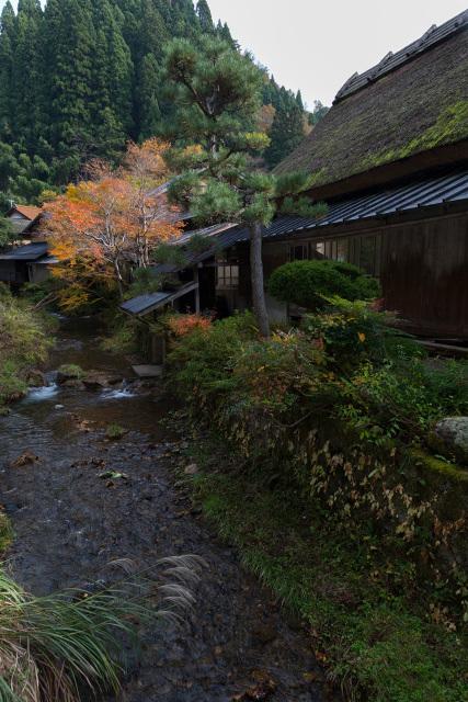 板井原集落の秋