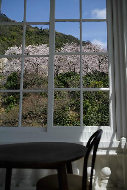 仁風閣 桜 鳥取市 久松公園