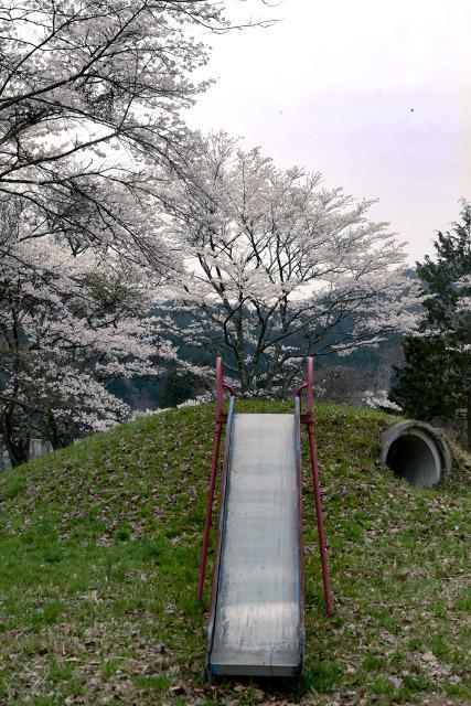 福栄小学校