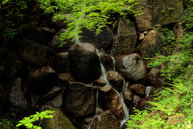 滝山公園 竜王滝