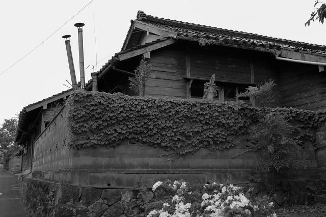 島根県 大根島
