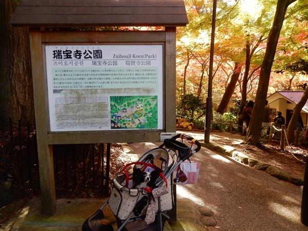 瑞宝寺公園看板と