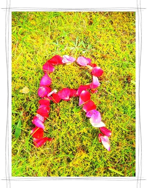 薔薇文字R