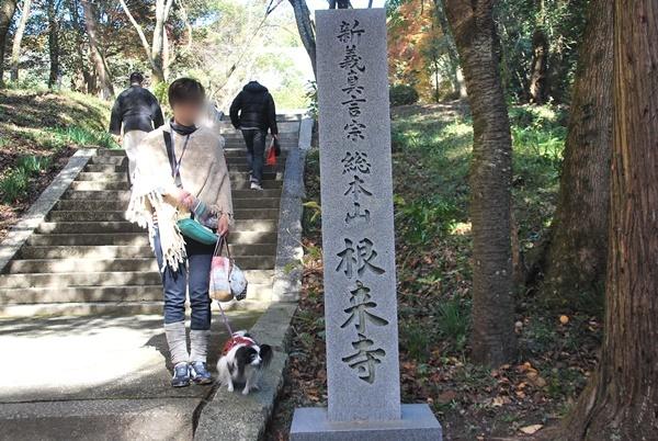 根来寺石碑と