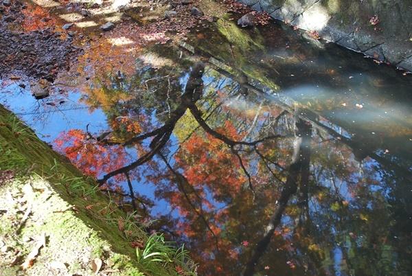 川に映る紅葉