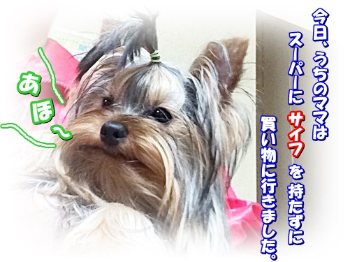 IMG_3113.jpg