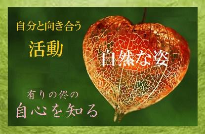 自然な姿を知る和紙75