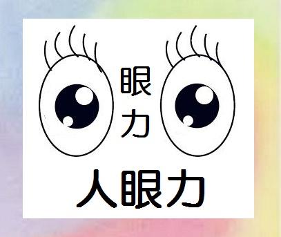 人眼力10