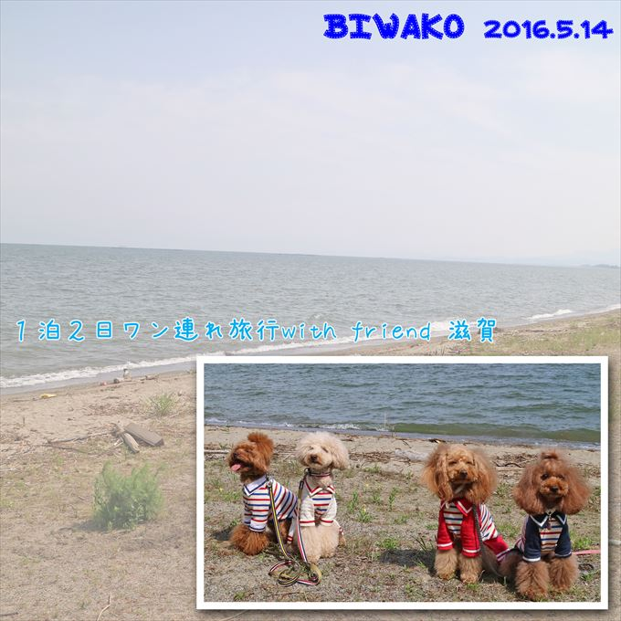 110_20160702184133fa4.jpg