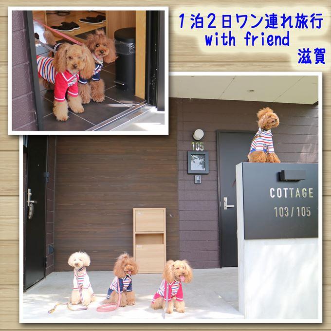 114_20160702184131ef8.jpg