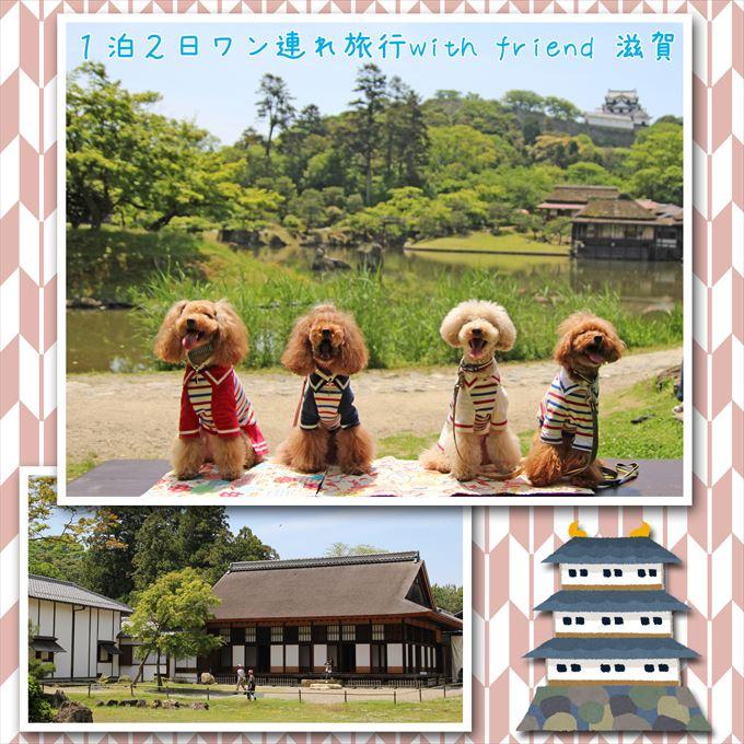 123_201607021900209fc.jpg