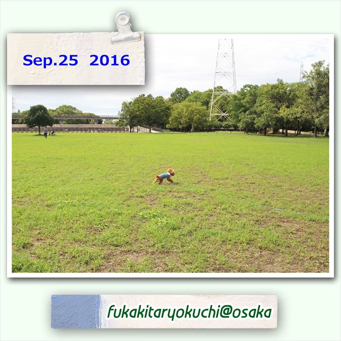 291_20161024113103454.jpg