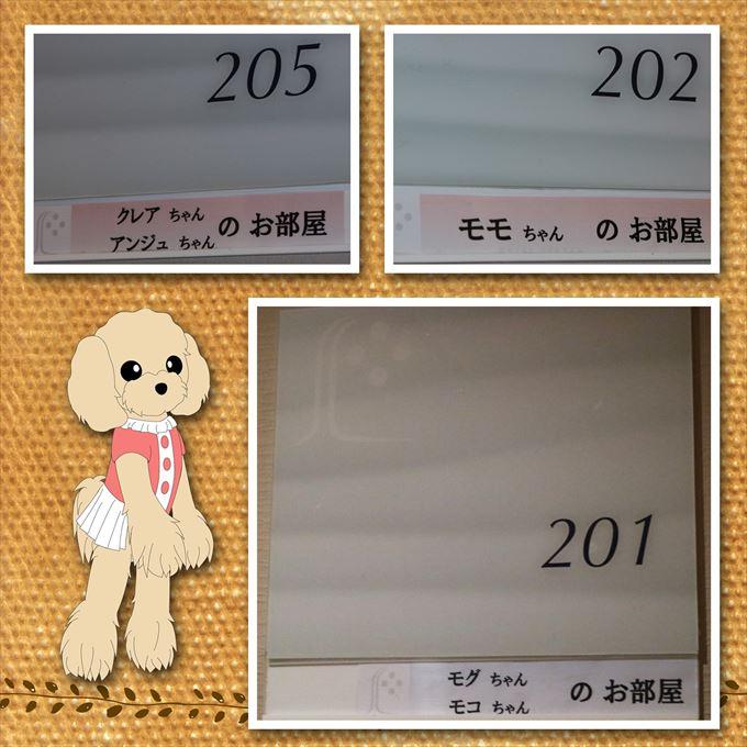 471_2016112319171286d.jpg