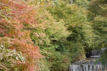 tozanguchi1103.jpg