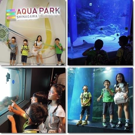 Aqua park-1