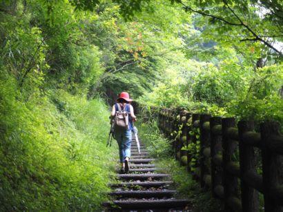 熊野古道1