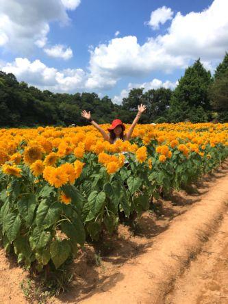 2016夏ひまわり畑maki