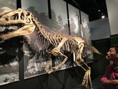2016sep19恐竜特別展示室4