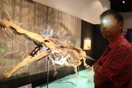 2016sep19恐竜特別展示室1